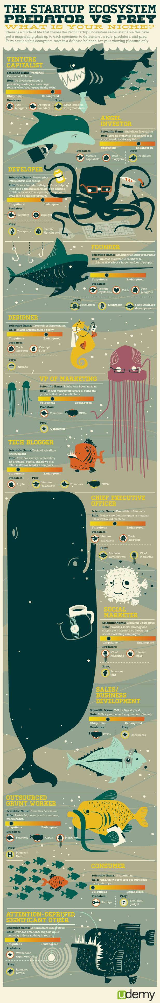 Startup Ecosystem Infographic